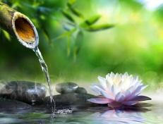 5-idees-pour-faire-un-jardin-zen